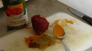 Tomato paste, coriander, turmeric, garam masala and canned tomatoes